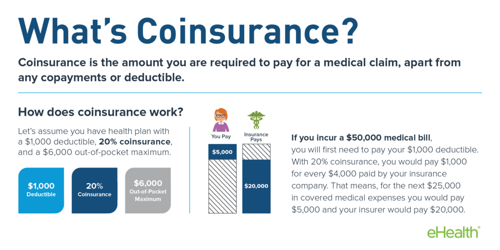 What is Coinsurance